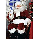 Santa Outfit (Plus Size)