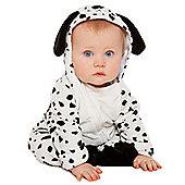 Little Dalmatian 12-18 months