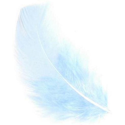 Feather Petals - Pale Blue
