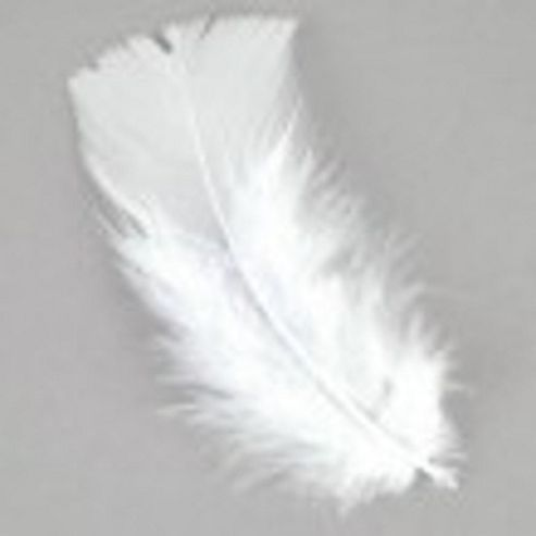 Feather Petals - White
