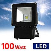 MiniSun IP65 High Power 100W Daylight LED Floodlight