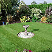Rolawn Medallion® Turf