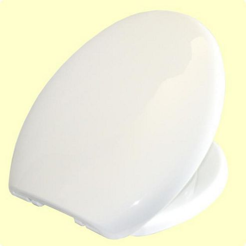 Simple Soft Close White Toilet Seat and Cover