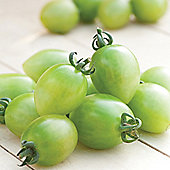 Tomato 'Green Envy' F1 Hybrid - 1 packet (8 tomato seeds)