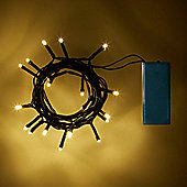 20 Warm White LED Battery Fairy Lights on Green Cable