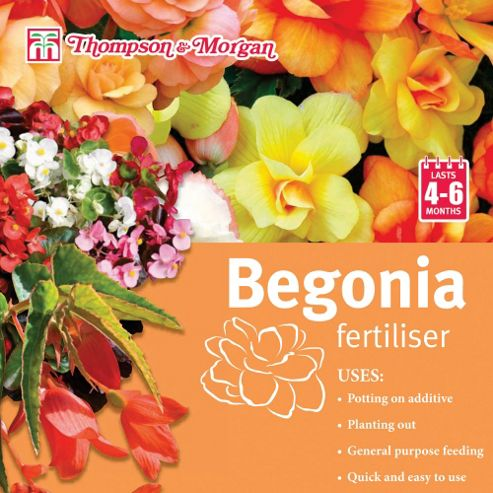 Begonia Fertiliser - 1 x 100g pack