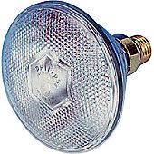 PAR38 Economy Floodlamp