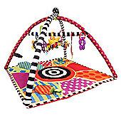 Sassy Sensory Gym Baby Playmat