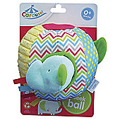 Baby Carousel Hide & Seek Ball
