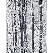 Frosted Wood Wallpaper - Arthouse 670200