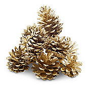 Set of 10 Metallic Gold Real Fir Pine Cone Christmas Decorations