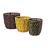 Linea Set Of 3 Nested Water Hyacinth Baskets In Beige