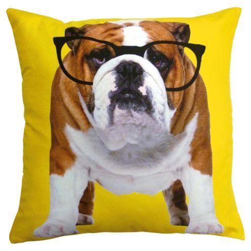 Novelty Bull Dog In Glasses Cushion