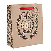 Pack Of Three Large Delivered By Reindeer Gift Bag