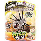 Wild Pets Spider - Wolfgang