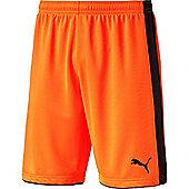 Puma Tournament Goalkeeper Short - Orange