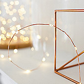 20 Micro Warm White LED Battery Fairy Lights on Copper Wire