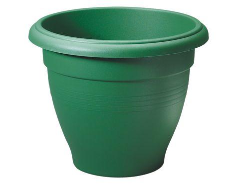 Stewart 2012019 Palladian Plant. Green 30X24.5