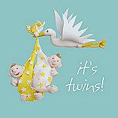 Holy Mackerel Stork twins Greetings Card