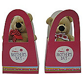 Mothers Day Bear In A Hand Bag