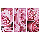 Rose Canvases Set of 3 50 x 37cm