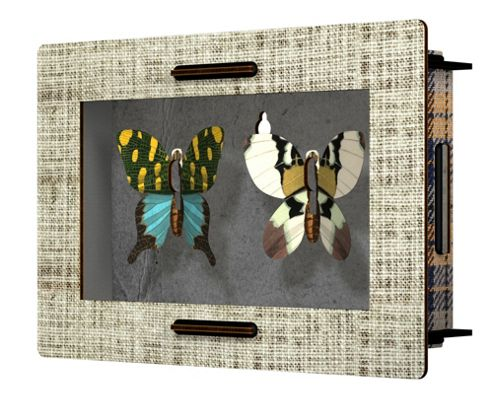Cheek to Cheek Butterfly Collection