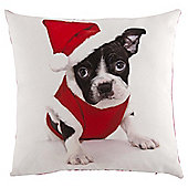 Novelty Xmas Dog Photographic Cushion