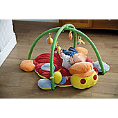 Tippitoes Nikki Bug Activity Play Mat