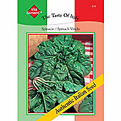 Spinach 'Viridis' - Vita Sementi® Italian Seeds - 1 packet (1200 spinach seeds)