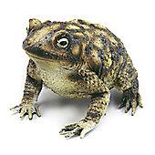 Rubber Toad - 17cm Halloween Prop