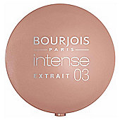Bourjois Round Pot Eye-Intense Rose Sable T3