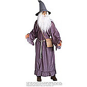 Lord of the Rings Gandalf - Standard
