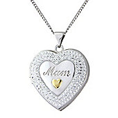 "Sterling Silver and 9ct Gold Crystal Pendant with Chain Message - ""The Love Between a Mother and Daughter Grows Forever"""