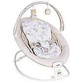 Graco Duet 2 in 1 Baby Rocker