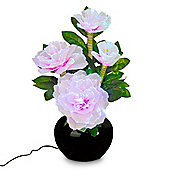 RGB Colour Changing LED Fibre Optic Flower Vase Table Lamp