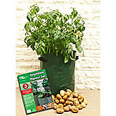 Eco - Vegetable Planter Grow Bags - Set Of Three - Green