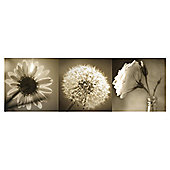 Floral Triptych  Canvas, Set of Three 20x60cm