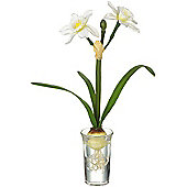 Parlane Artificial White Narcissus Flower Plant In Glass Vase - 14 x 4cm