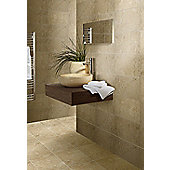 Cappucino Dark Beige Wall and Floor Ceramic Tile 300x500mm