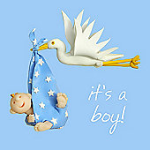 Holy Mackerel Stork baby boy Greetings Card