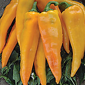Sweet Pepper 'Astor' F1 Hybrid - 1 packet (10 sweet pepper seeds)