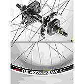 Momentum Solo 700c Wheel: Black Rear