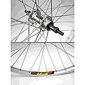 Momentum Weinmann/Quando 26 Wheel: Silver Rear