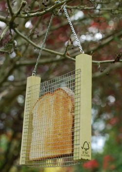 Toast holder for feeding birds