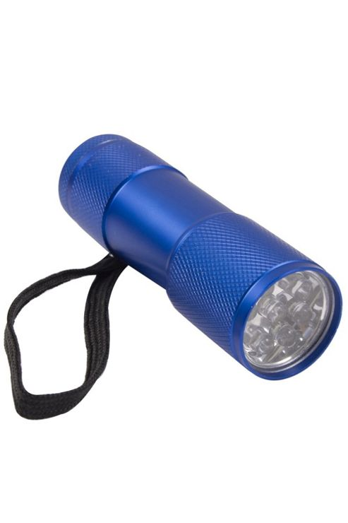 Fun 9 LED Gift Torch Flashlight Torchlight Light Lamp