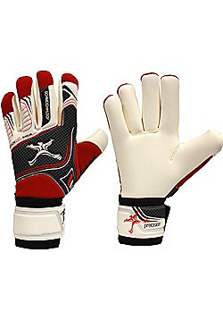 Precision Gk Schmeichology 5 Fusion Scholar Junior Goalkeeper Gloves - Red