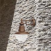 Faro Rustic 1 Light Wall Lamp in Brown