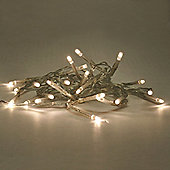 20 LED Battery Operated String Lights Warm White