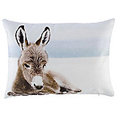 Christmas Donkey Photographic Cushion