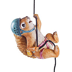 Sebastian the Rock Climbing Hanging Squirrel Garden Ornament